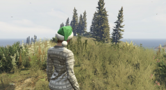 Увеличенная плотность травы