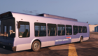 Real Airlines Bus