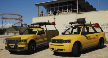 LSCoFD Lifeguard Pack