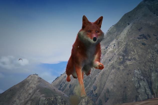 Скин Wild Fox