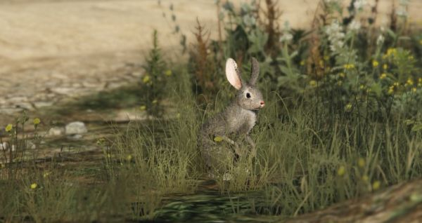 Кролики в GTA 5