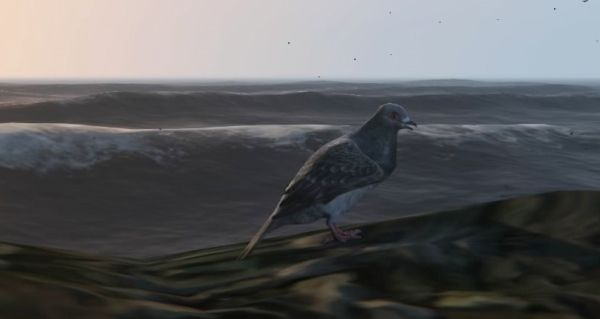 Птицы: Голубь в GTA 5
