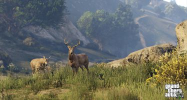 Анализ трейлера Grand Theft Auto V: «Заборчик и пес по имени Скип»