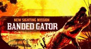 Легендарный аллигатор RDO
